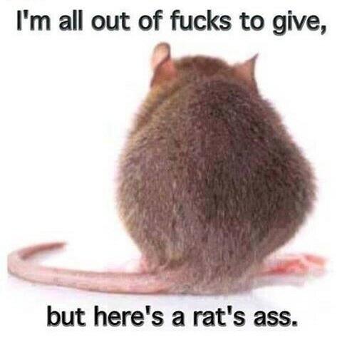 rat's ass.jpg