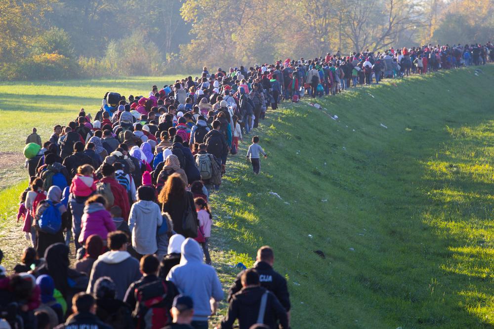 refugees_migrants_creditjanossy_gergely_shutterstock.jpeg