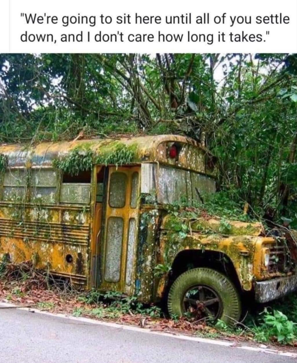 School Bus with Moss.jpg
