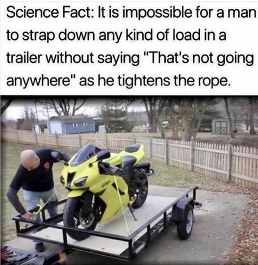 sci fact.jpg