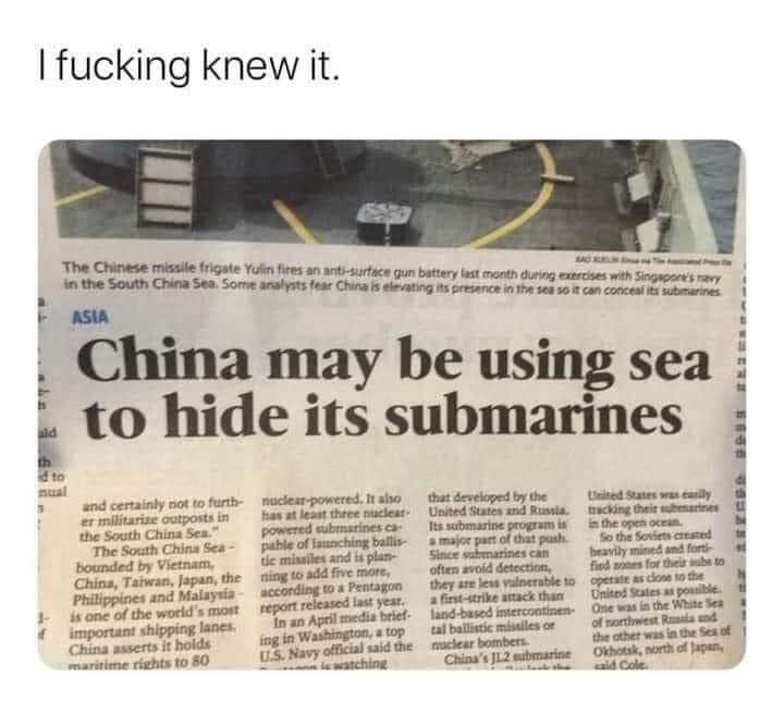 sea hide.jpg