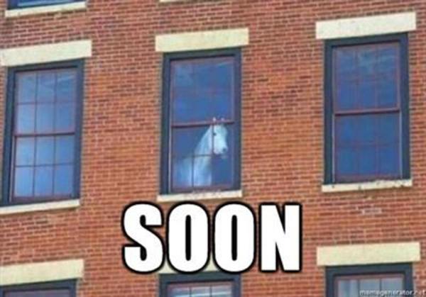 Soon horse.jpg