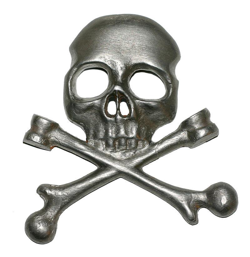 ss skull.jpg