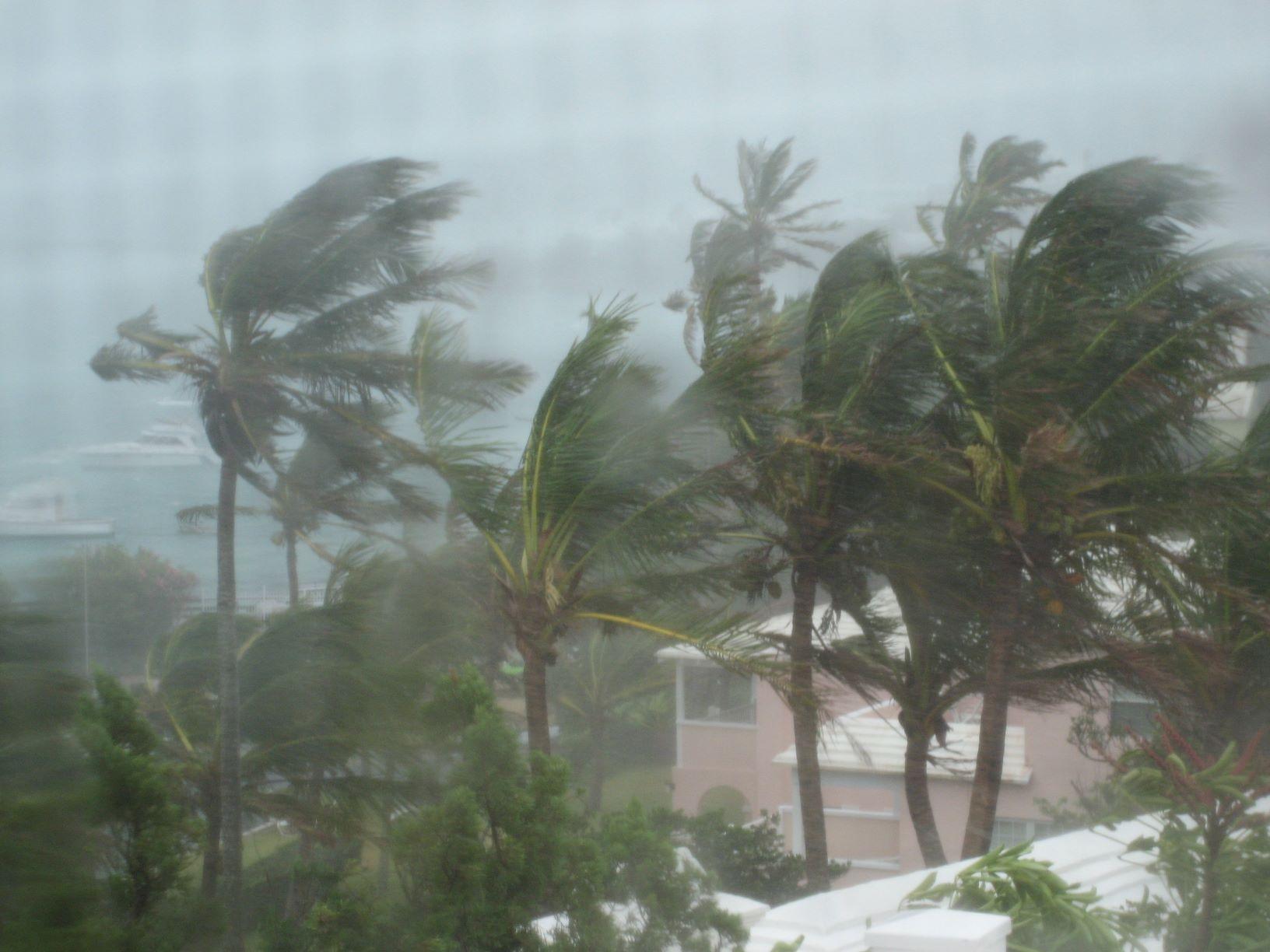 storm 2.JPG