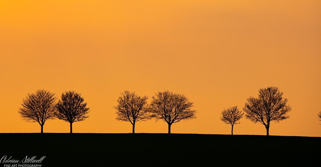 Sunset Heydon-2.jpg