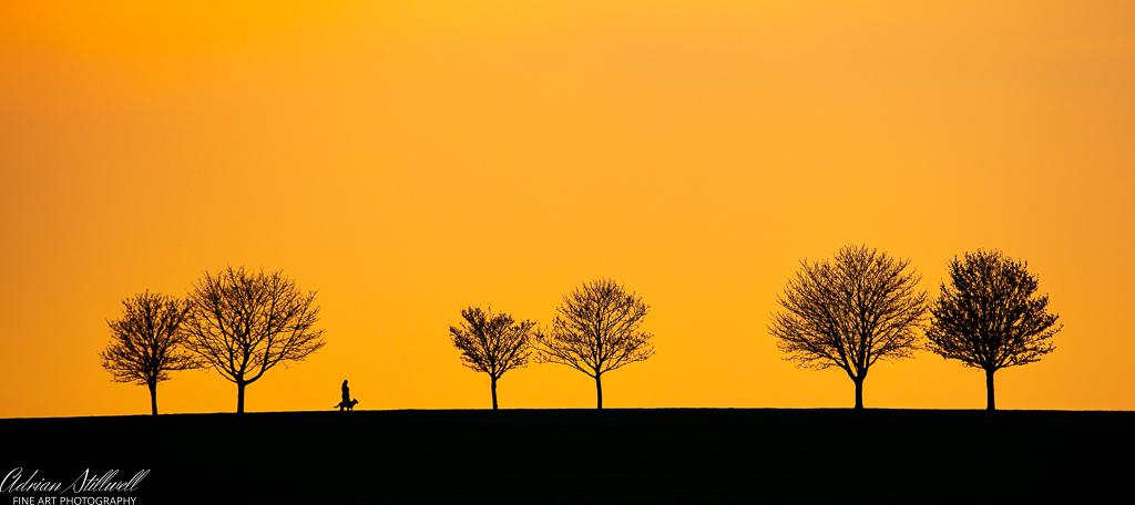 Sunset Heydon-3.jpg