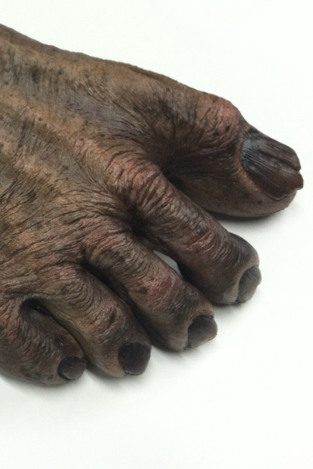 The-Bigfoot-Oh-Mahs-feet-and-hands-sculpted-and-painted-by-Patrick-Magee-awaiting-hair.jpeg
