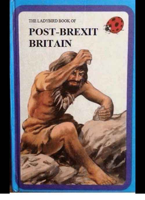 the-ladybird-book-of-post-brexit-es-britain-12234782.png