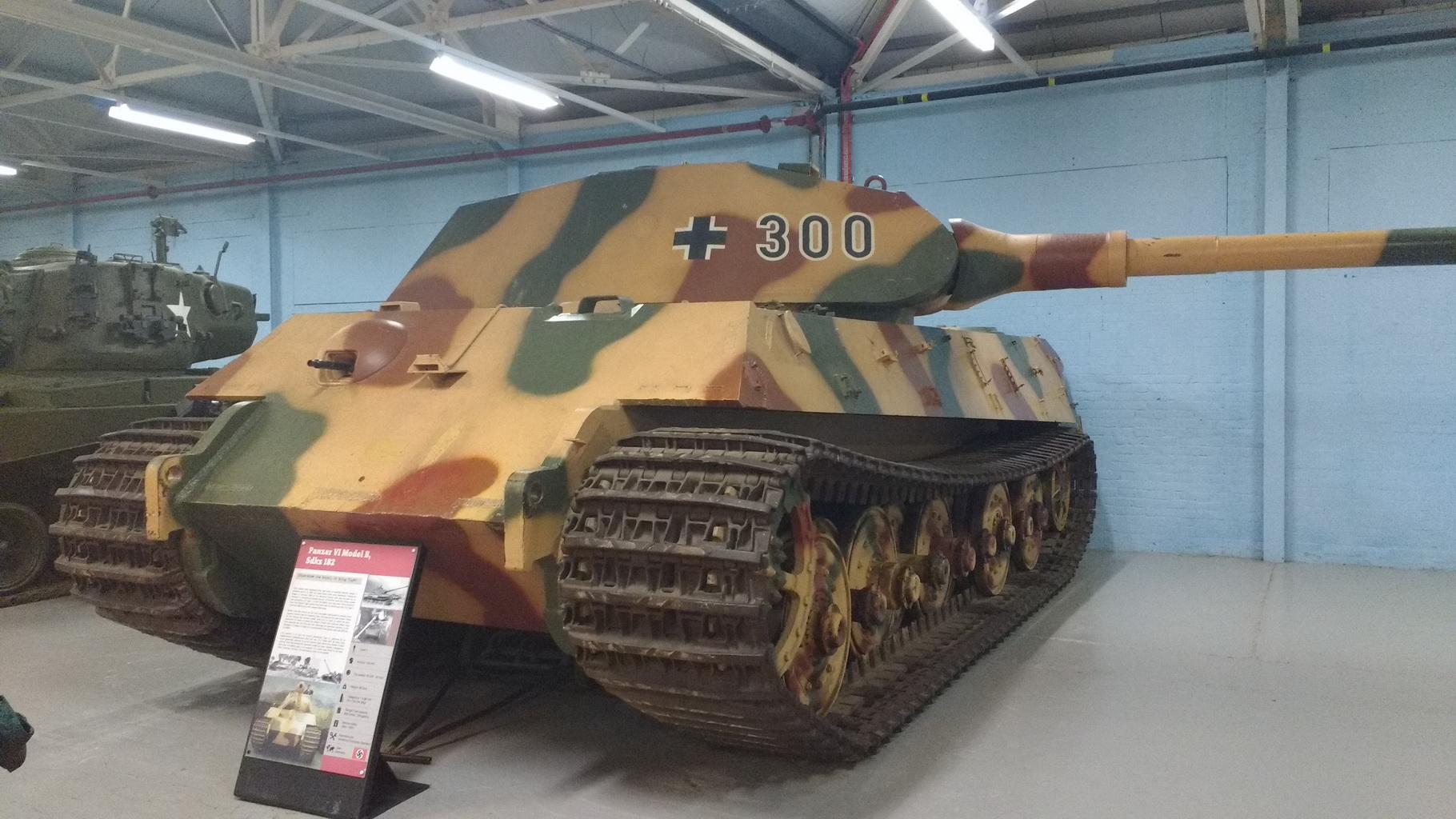 Tiger2_03.jpg