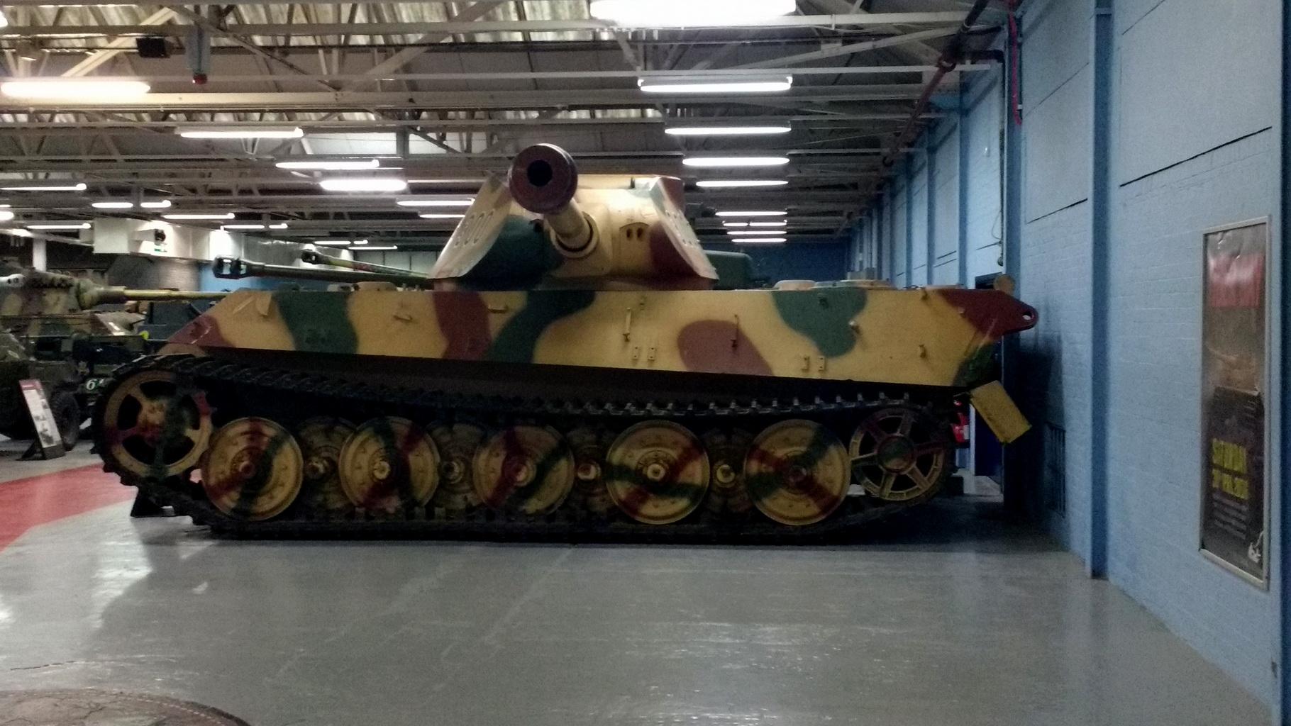 Tiger2_04.jpg