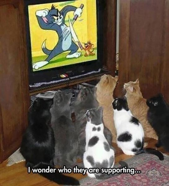 tom&Jerry.png