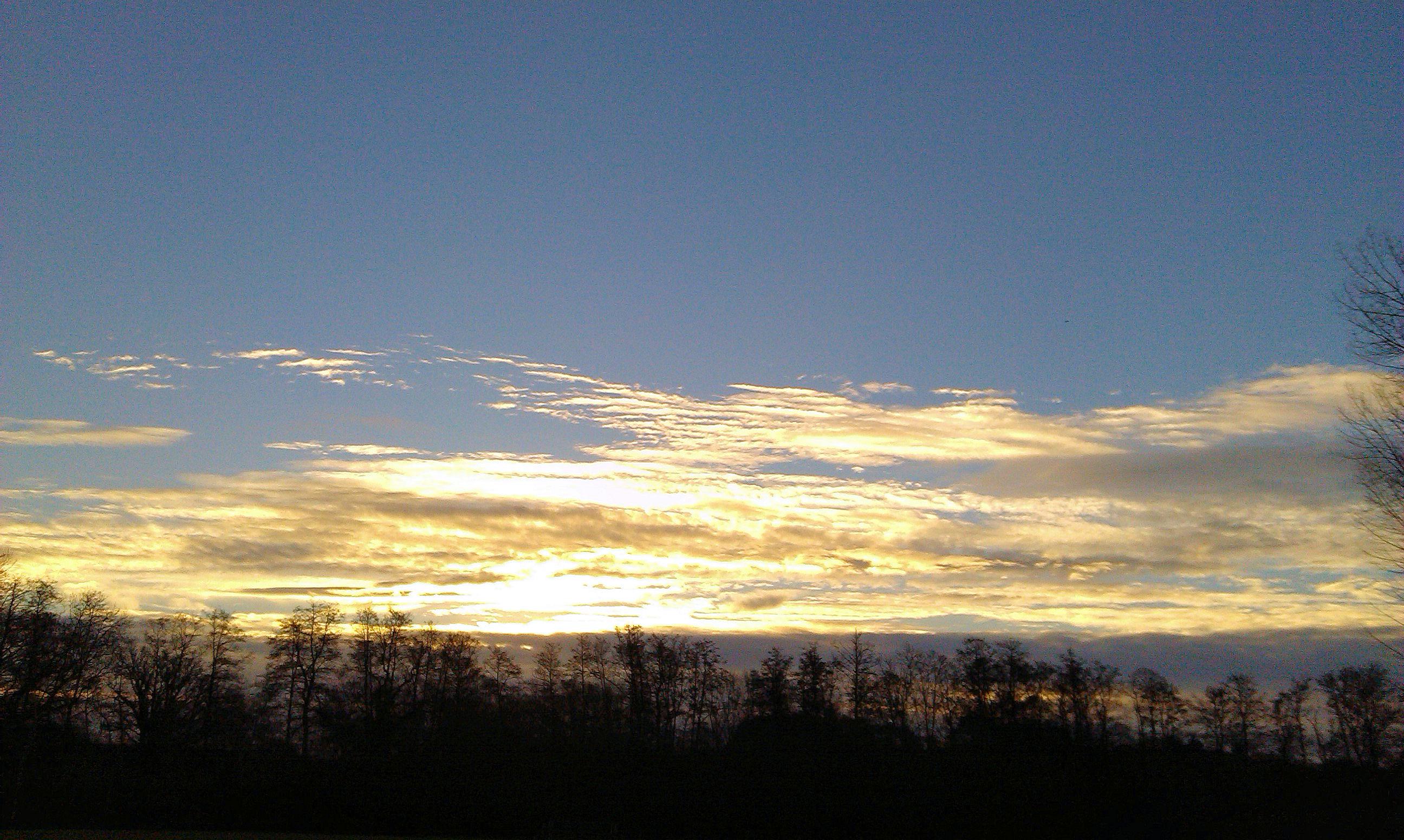 upload_2014-12-19_11-45-54.jpeg