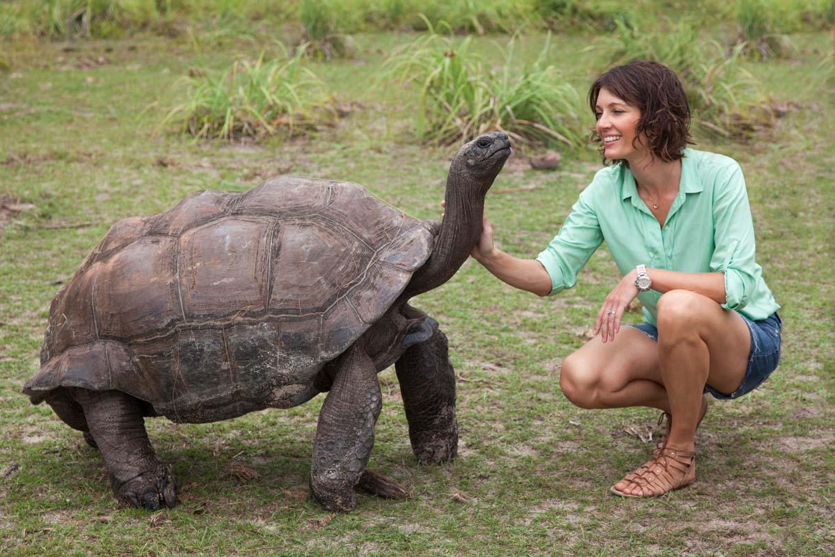 vag turtle.jpg