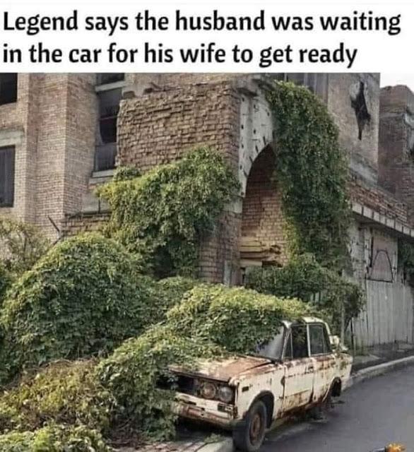 wife1.jpg