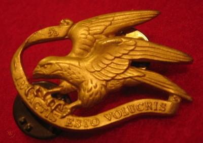 ww2-danish-guard-hussars-gold-badge_1_33e4140d39aa2b617a97285a636469fa.jpg
